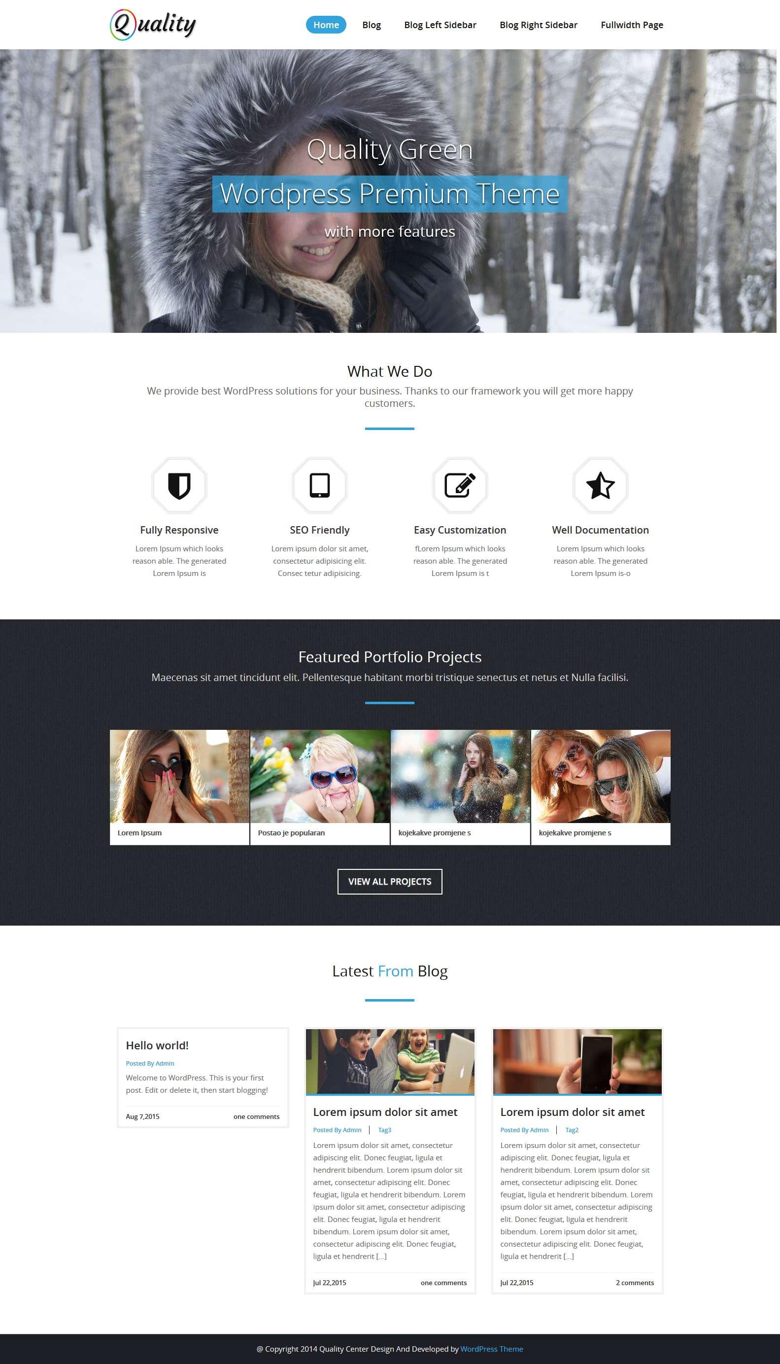 Quality Blue Child Version Details Page - WebRiti