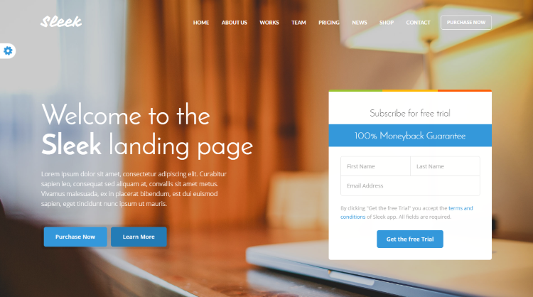 Sleek Startup WordPress Theme