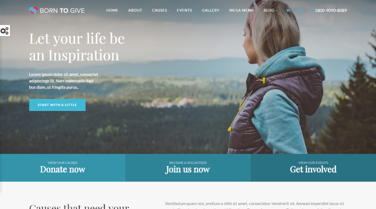 Born to Give Crowdfunding WordPress Theme