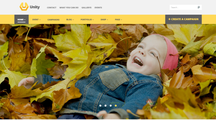 Unity Crowdfunding WordPress Theme